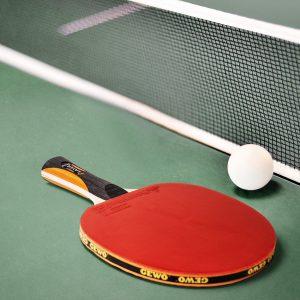 GEWO Tischtennisplatten