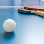 Indoor Tischtennisplatte vs. Outdoor Tischtennisplatte